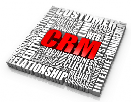 CRM Word Puzzle