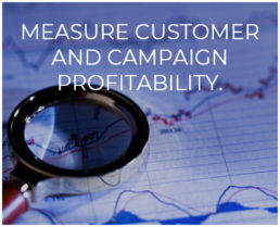 Measure Customer and Campaign Profitability